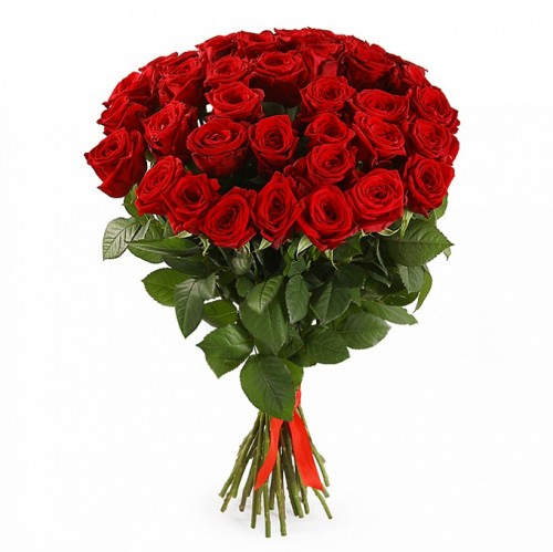 35-trandafiri-rosii
