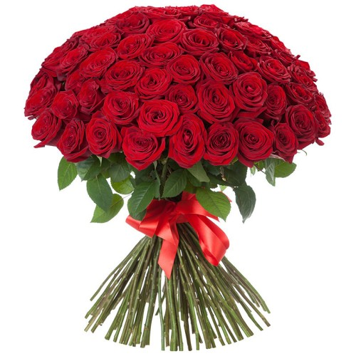 101-red-roses