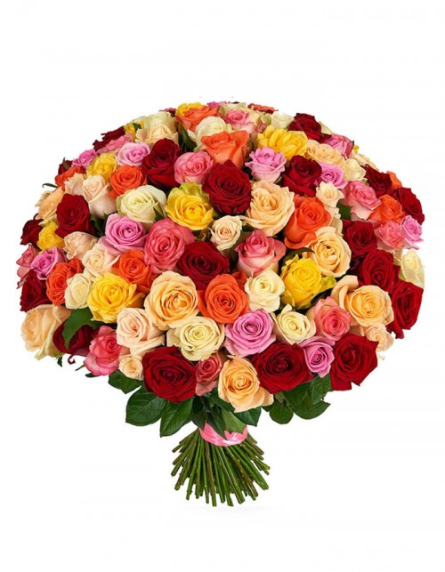 101-trandafiri-mix